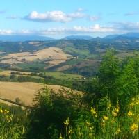 Panorama lato colline
